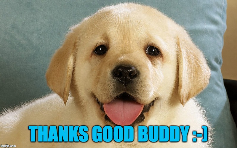 THANKS GOOD BUDDY :-) | made w/ Imgflip meme maker