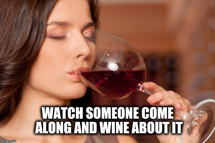 WATCH SOMEONE COME ALONG AND WINE ABOUT IT | made w/ Imgflip meme maker