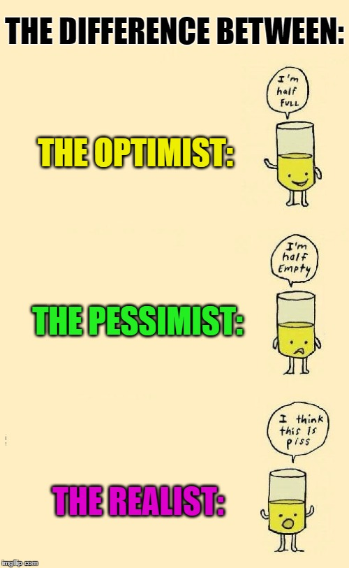 Just to clarify | THE DIFFERENCE BETWEEN: THE PESSIMIST: THE OPTIMIST: THE REALIST: | image tagged in memes,funny,puns,cliche,imgflip,old sayings | made w/ Imgflip meme maker