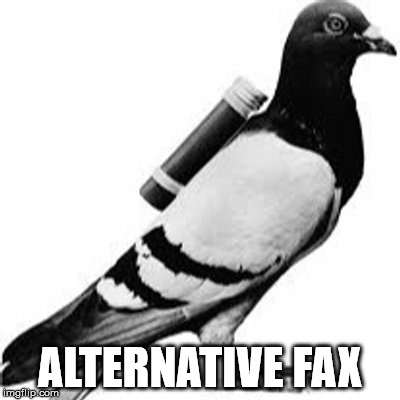 Alternative fax | ALTERNATIVE FAX | image tagged in carrier pigeon,trump,alternative facts | made w/ Imgflip meme maker