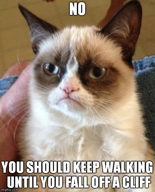 Grumpy Cat Meme | NO YOU SHOULD KEEP WALKING UNTIL YOU FALL OFF A CLIFF | image tagged in memes,grumpy cat | made w/ Imgflip meme maker
