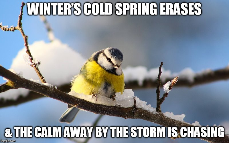 DMB Satellite | WINTER'S COLD SPRING ERASES & THE CALM AWAY BY THE STORM IS CHASING | image tagged in dmb,dave matthews band,satellite,winters cold spring erases | made w/ Imgflip meme maker