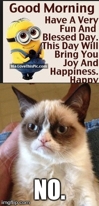 UNhappy Monday everyone! | NO. | image tagged in grumpy cat,minion,memes,monday,yay monday | made w/ Imgflip meme maker