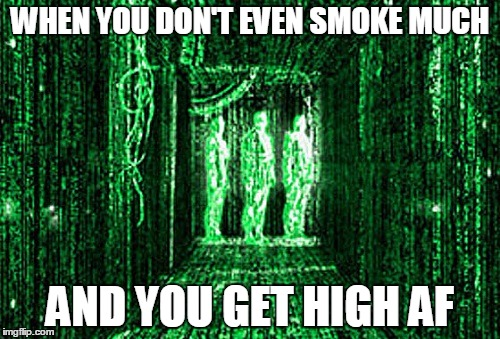 Matrix High | WHEN YOU DON'T EVEN SMOKE MUCH AND YOU GET HIGH AF | image tagged in matrix,too damn high | made w/ Imgflip meme maker