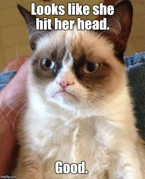 Grumpy Cat Meme | Looks like she hit her head. Good. | image tagged in memes,grumpy cat | made w/ Imgflip meme maker