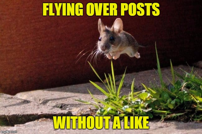 Skipping Posts | FLYING OVER POSTS WITHOUT A LIKE | image tagged in weird postings,bad post,shitpost,unimpressed,unlikely friends | made w/ Imgflip meme maker