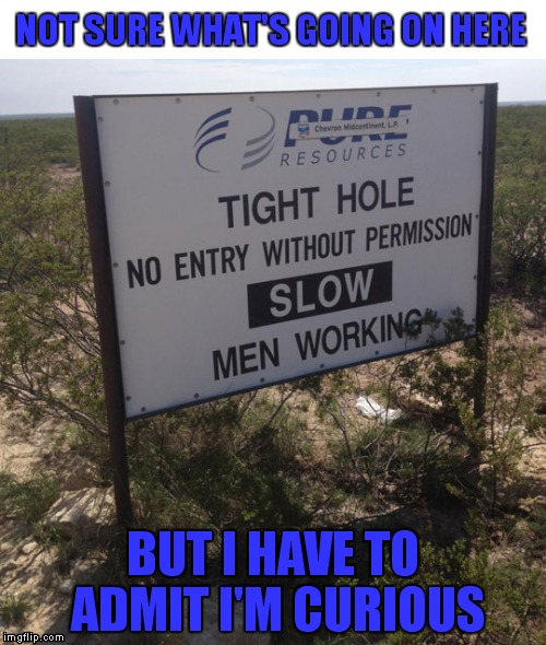 Just wow... | NOT SURE WHAT'S GOING ON HERE BUT I HAVE TO ADMIT I'M CURIOUS | image tagged in funny signs,crazyroadsigns | made w/ Imgflip meme maker