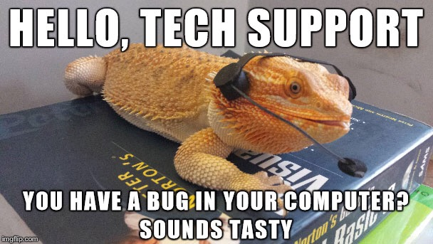 Dragon Support |  HELLO, TECH SUPPORT; YOU HAVE A BUG IN YOUR COMPUTER, SOUNDS TASTY | image tagged in memes | made w/ Imgflip meme maker