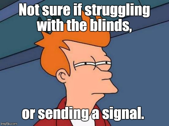 Futurama Fry Meme | Not sure if struggling with the blinds, or sending a signal. | image tagged in memes,futurama fry | made w/ Imgflip meme maker