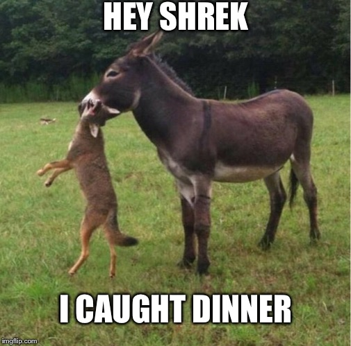 HEY SHREK I CAUGHT DINNER | image tagged in memes | made w/ Imgflip meme maker