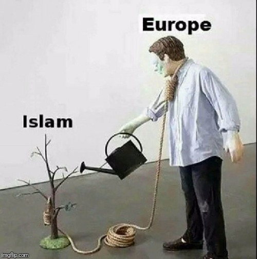 Not busting on all Muslims, but lots of radicals running around Europe. | image tagged in memes,politics,radical islam | made w/ Imgflip meme maker