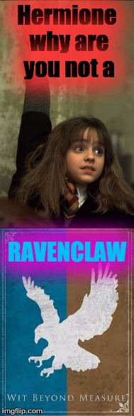 Not ravenclaw |  Hermione why are you not a; RAVENCLAW | image tagged in why,harrypotter,hogwarts | made w/ Imgflip meme maker
