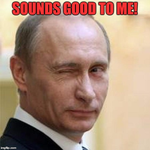 Putin Wink | SOUNDS GOOD TO ME! | image tagged in putin wink | made w/ Imgflip meme maker