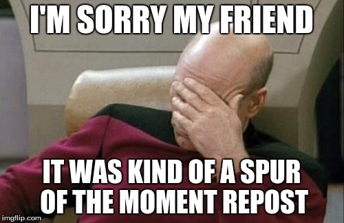 Captain Picard Facepalm Meme | I'M SORRY MY FRIEND IT WAS KIND OF A SPUR OF THE MOMENT REPOST | image tagged in memes,captain picard facepalm | made w/ Imgflip meme maker