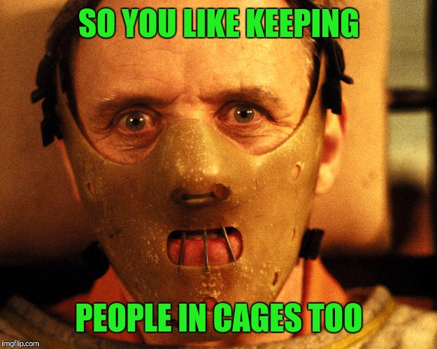 SO YOU LIKE KEEPING PEOPLE IN CAGES TOO | made w/ Imgflip meme maker