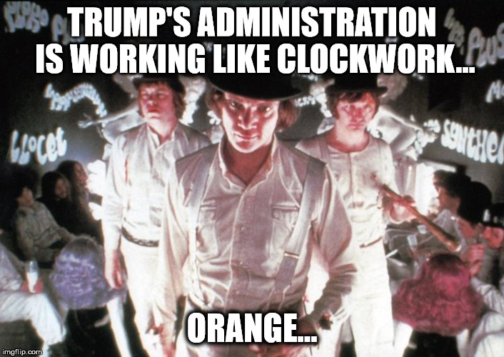 Trump's administration is running like clockwork...orange. | TRUMP'S ADMINISTRATION IS WORKING LIKE CLOCKWORK... ORANGE... | image tagged in donald trump,clockwork orange | made w/ Imgflip meme maker