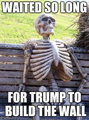 Waiting Skeleton | WAITED SO LONG FOR TRUMP TO BUILD THE WALL | image tagged in memes,waiting skeleton | made w/ Imgflip meme maker