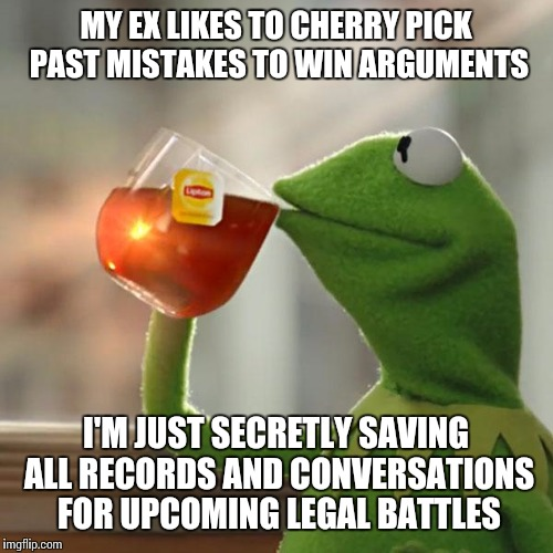 But Thats None Of My Business Meme | MY EX LIKES TO CHERRY PICK PAST MISTAKES TO WIN ARGUMENTS I'M JUST SECRETLY SAVING ALL RECORDS AND CONVERSATIONS FOR UPCOMING LEGAL BATTLES | image tagged in memes,but thats none of my business,kermit the frog | made w/ Imgflip meme maker
