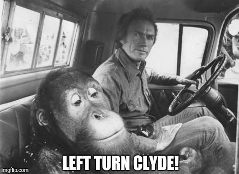 LEFT TURN CLYDE! | made w/ Imgflip meme maker