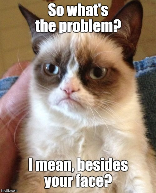 Grumpy Cat Meme | So what's the problem? I mean, besides your face? | image tagged in memes,grumpy cat | made w/ Imgflip meme maker