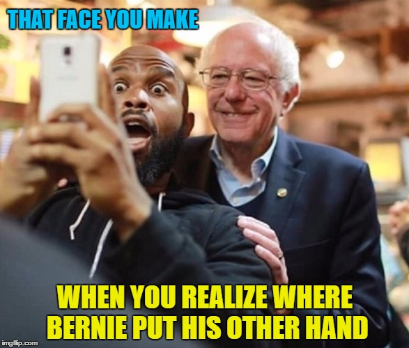 That Face You Make... | THAT FACE YOU MAKE WHEN YOU REALIZE WHERE BERNIE PUT HIS OTHER HAND | image tagged in funny memes,wmp,bernie sanders,goose | made w/ Imgflip meme maker
