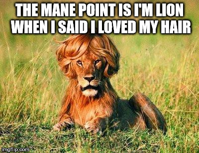 Funny Lion | THE MANE POINT IS I'M LION WHEN I SAID I LOVED MY HAIR | image tagged in funny lion | made w/ Imgflip meme maker