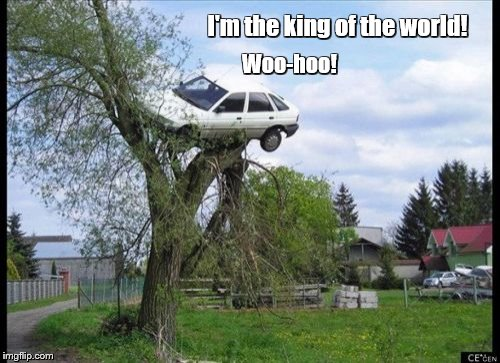 Secure Parking Meme | I'm the king of the world! Woo-hoo! | image tagged in memes,secure parking | made w/ Imgflip meme maker