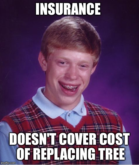 Bad Luck Brian Meme | INSURANCE DOESN'T COVER COST OF REPLACING TREE | image tagged in memes,bad luck brian | made w/ Imgflip meme maker