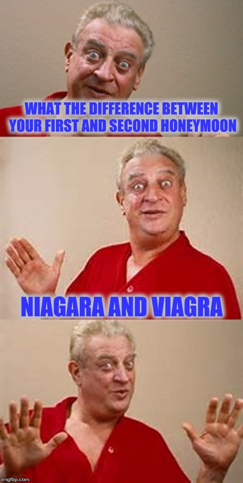 bad pun Dangerfield  | WHAT THE DIFFERENCE BETWEEN YOUR FIRST AND SECOND HONEYMOON NIAGARA AND VIAGRA | image tagged in bad pun dangerfield | made w/ Imgflip meme maker