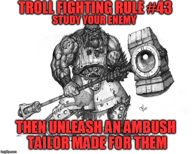 Troll Smasher | TROLL FIGHTING RULE #43 THEN UNLEASH AN AMBUSH TAILOR MADE FOR THEM STUDY YOUR ENEMY | image tagged in troll smasher | made w/ Imgflip meme maker