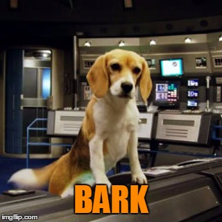 Captain Archer's Beagle Porthos | BARK | image tagged in captain archer's beagle porthos | made w/ Imgflip meme maker