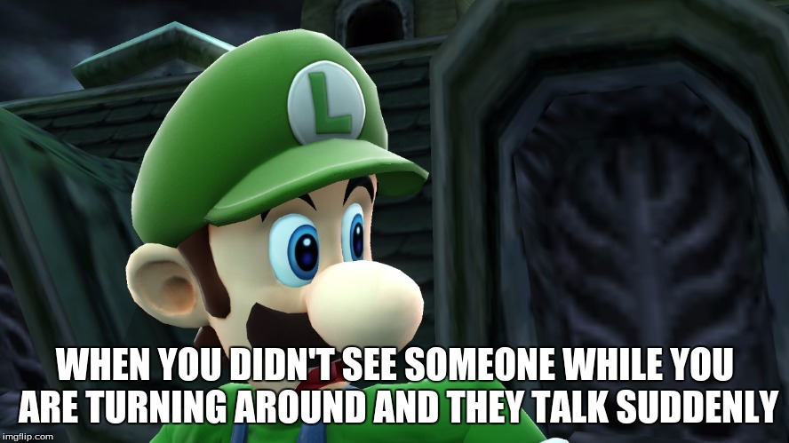 This happens to me personally way too much | WHEN YOU DIDN'T SEE SOMEONE WHILE YOU ARE TURNING AROUND AND THEY TALK SUDDENLY | image tagged in scared luigi | made w/ Imgflip meme maker