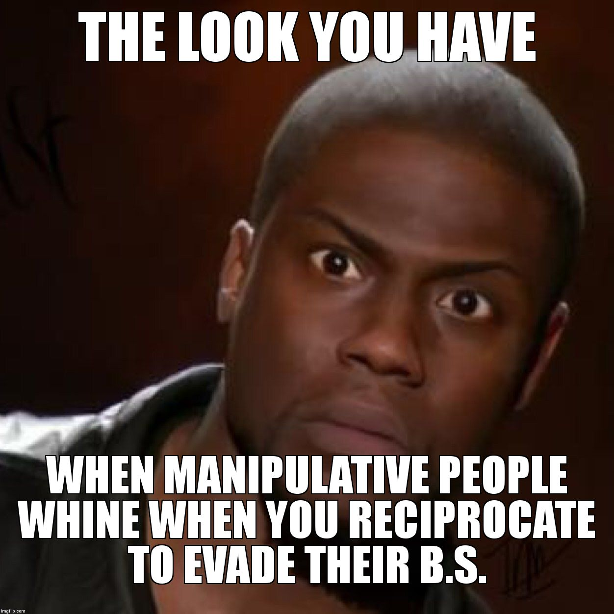 that look you give | THE LOOK YOU HAVE  WHEN MANIPULATIVE PEOPLE WHINE WHEN YOU RECIPROCATE TO EVADE THEIR B.S. | image tagged in that look you give | made w/ Imgflip meme maker