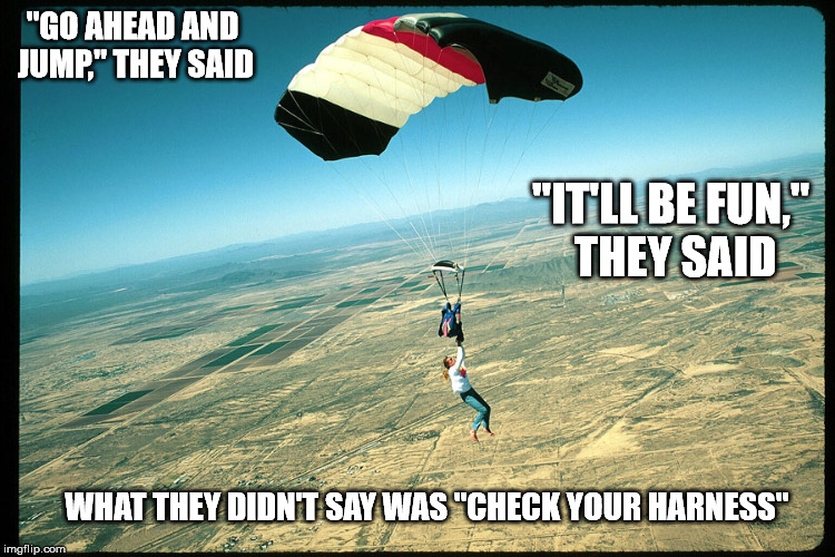 """GO AHEAD AND JUMP,"" THEY SAID ""IT'LL BE FUN,"" THEY SAID WHAT THEY DIDN'T SAY WAS ""CHECK YOUR HARNESS"" 