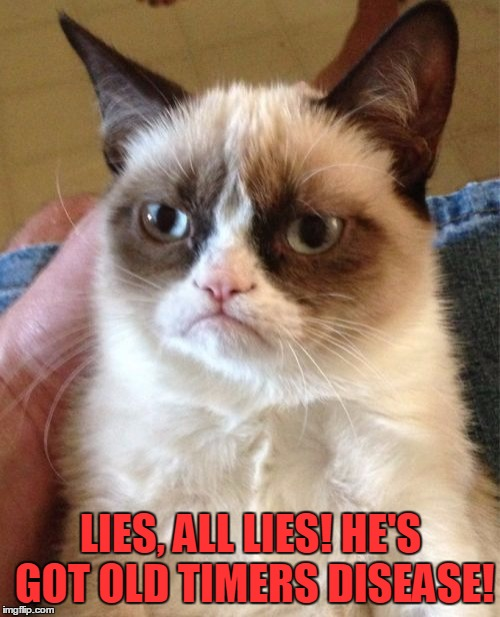 Grumpy Cat Meme | LIES, ALL LIES! HE'S GOT OLD TIMERS DISEASE! | image tagged in memes,grumpy cat | made w/ Imgflip meme maker