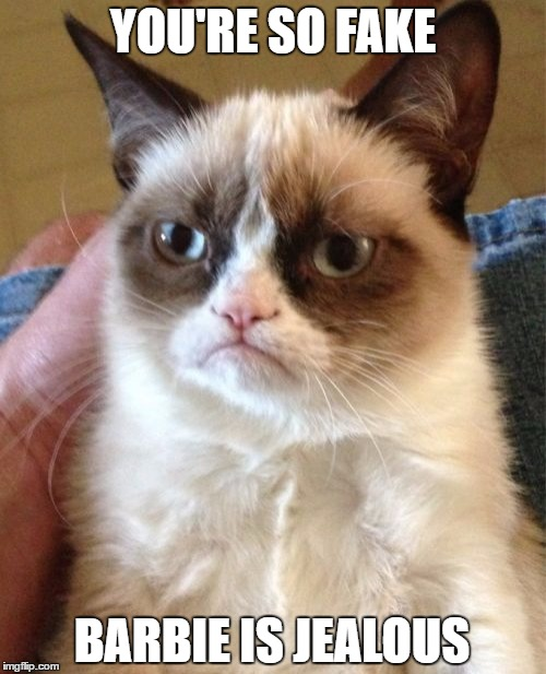 Grumpy Cat Meme | YOU'RE SO FAKE BARBIE IS JEALOUS | image tagged in memes,grumpy cat | made w/ Imgflip meme maker