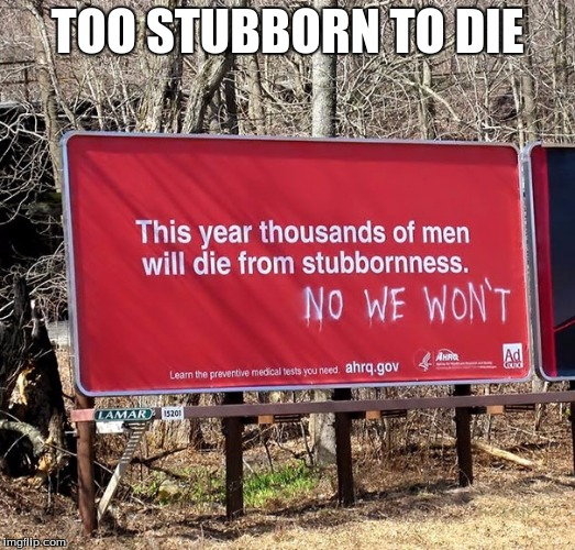 Laughed so hard I cried reading this, oh, that was me being lonely :( | TOO STUBBORN TO DIE | image tagged in lol | made w/ Imgflip meme maker