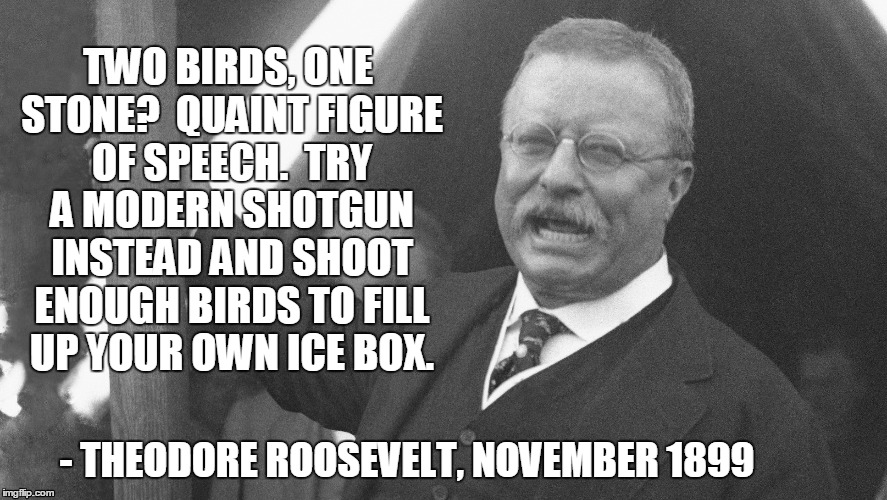 Theodore Roosevelt Quotes Prepossessing Teddy Roosevelt Quotes  Imgflip
