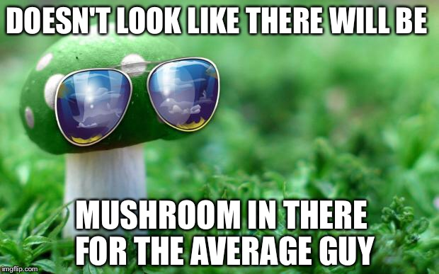 DOESN'T LOOK LIKE THERE WILL BE MUSHROOM IN THERE FOR THE AVERAGE GUY | made w/ Imgflip meme maker