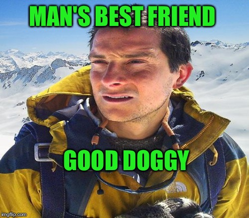 MAN'S BEST FRIEND GOOD DOGGY | made w/ Imgflip meme maker