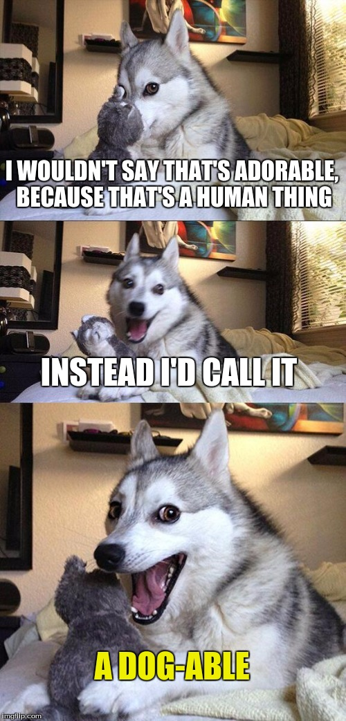 Bad Pun Dog Meme | I WOULDN'T SAY THAT'S ADORABLE, BECAUSE THAT'S A HUMAN THING INSTEAD I'D CALL IT A DOG-ABLE | image tagged in memes,bad pun dog | made w/ Imgflip meme maker