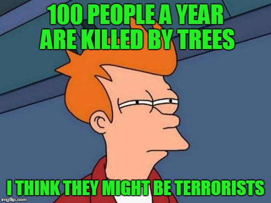 Futurama Fry Meme | 100 PEOPLE A YEAR ARE KILLED BY TREES I THINK THEY MIGHT BE TERRORISTS | image tagged in memes,futurama fry | made w/ Imgflip meme maker