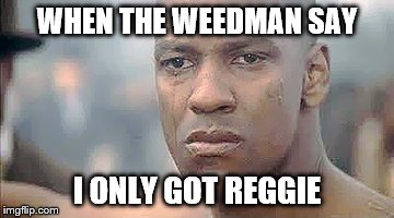 Denzel | WHEN THE WEEDMAN SAY I ONLY GOT REGGIE | image tagged in denzel | made w/ Imgflip meme maker