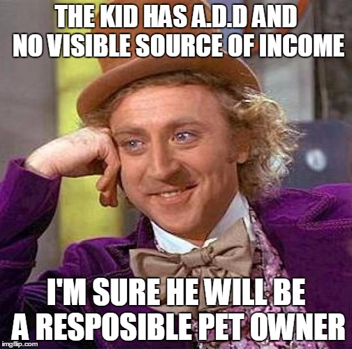 Creepy Condescending Wonka Meme | THE KID HAS A.D.D AND NO VISIBLE SOURCE OF INCOME I'M SURE HE WILL BE A RESPOSIBLE PET OWNER | image tagged in memes,creepy condescending wonka | made w/ Imgflip meme maker