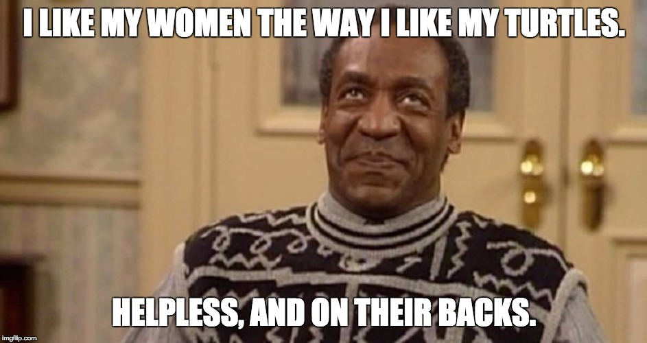 Bill Cosby the rapist | I LIKE MY WOMEN THE WAY I LIKE MY TURTLES. HELPLESS, AND ON THEIR BACKS. | image tagged in bill cosby the rapist | made w/ Imgflip meme maker
