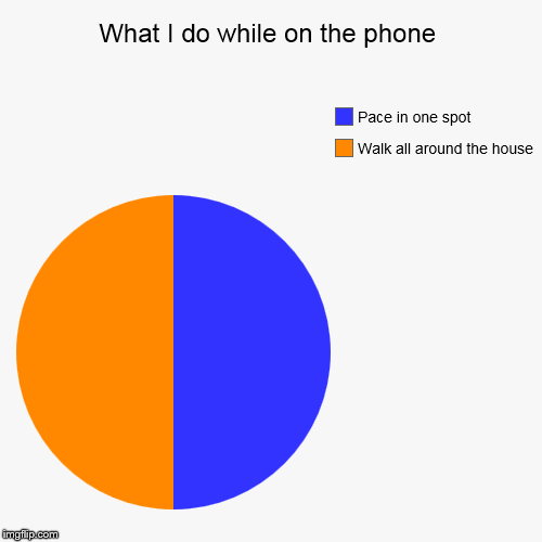 What I do while on the phone | Walk all around the house, Pace in one spot | image tagged in funny,pie charts | made w/ Imgflip pie chart maker