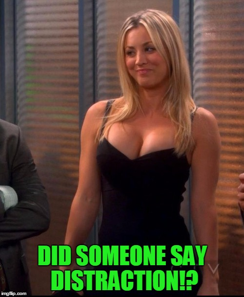 Penny - LBD | DID SOMEONE SAY DISTRACTION!? | image tagged in penny - lbd | made w/ Imgflip meme maker