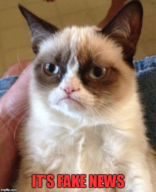 Grumpy Cat Meme | IT'S FAKE NEWS | image tagged in memes,grumpy cat | made w/ Imgflip meme maker