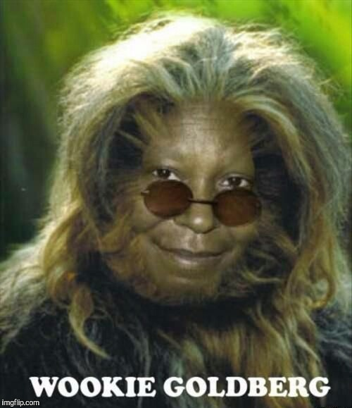 Wookie Goldberg | image tagged in wookie,star wars,whoopi goldberg,nature,weird,gmo | made w/ Imgflip meme maker