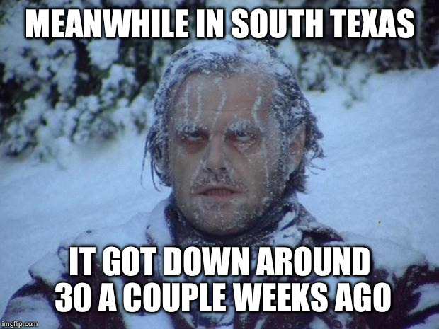 MEANWHILE IN SOUTH TEXAS IT GOT DOWN AROUND 30 A COUPLE WEEKS AGO | made w/ Imgflip meme maker